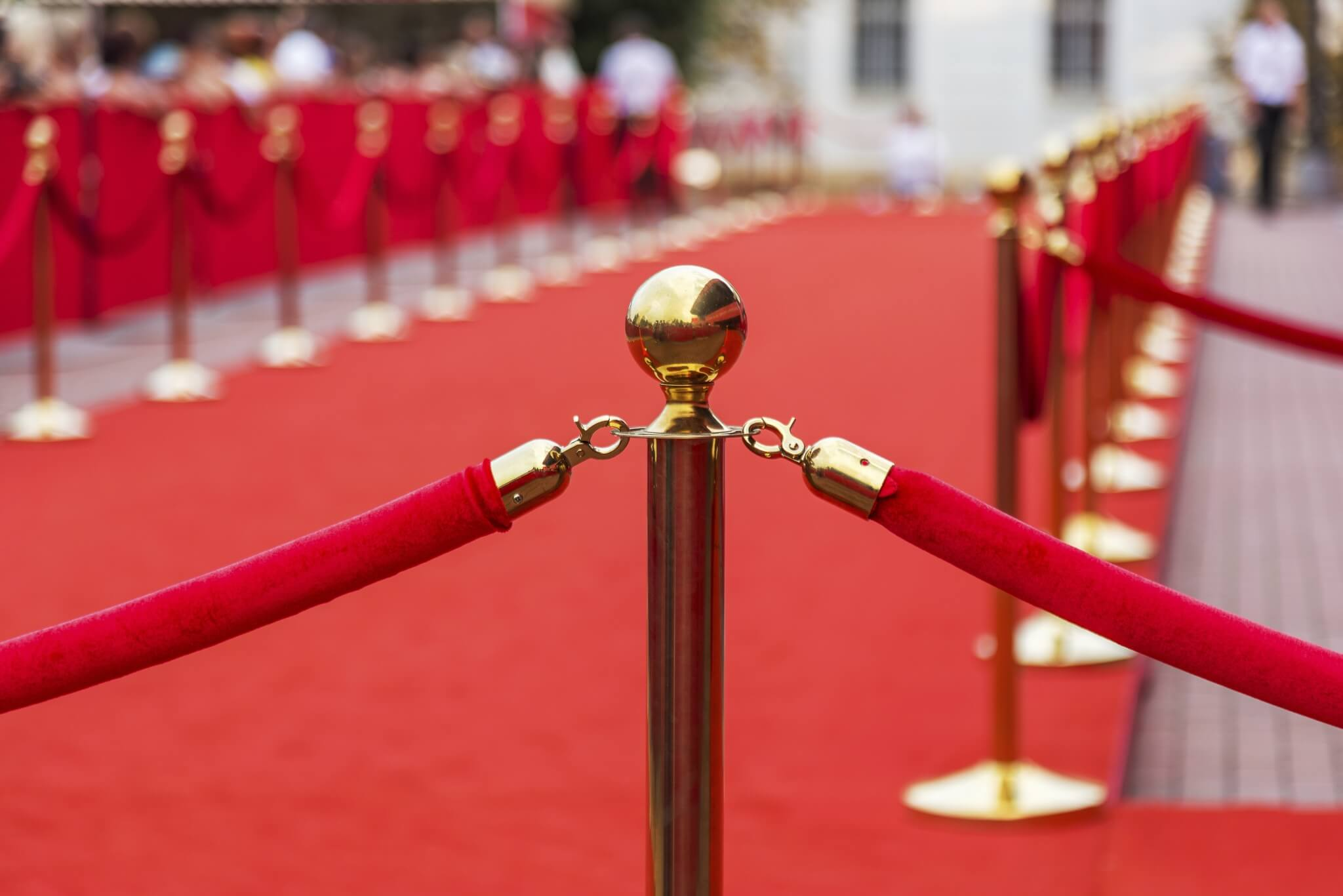 Path-to-Success-Red-Carpet-000044268092_Double.jpg.jpeg